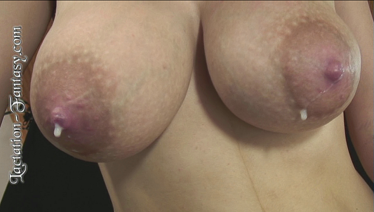 a beautiful pair of milk-swollen breasts leaking and dripping milk